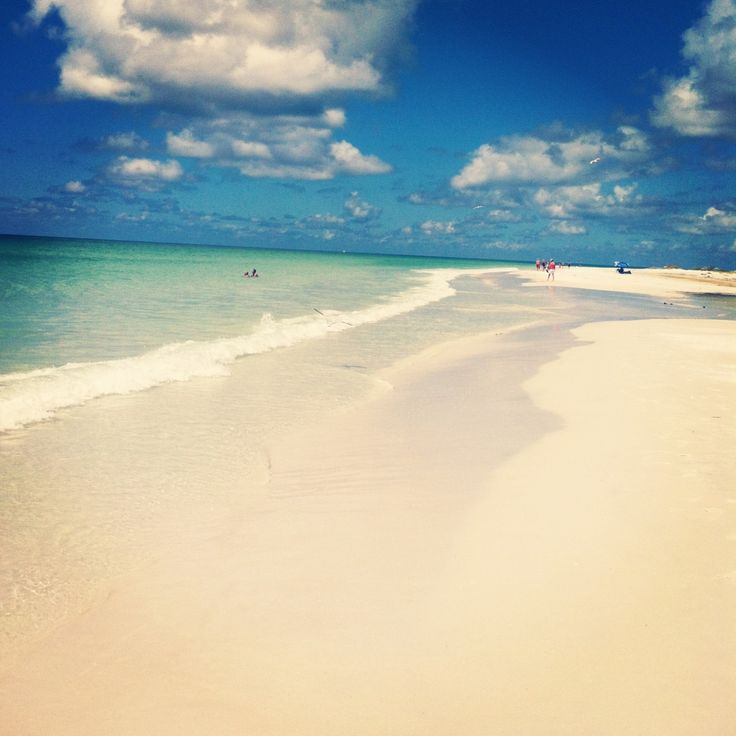 46 Best Images About Siesta Key On Pinterest