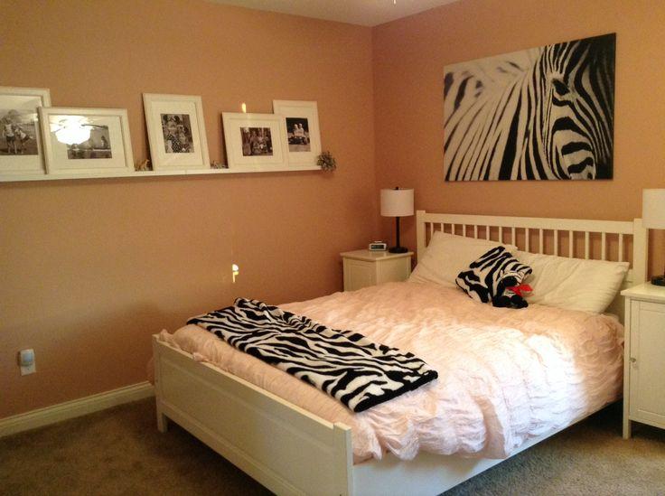63 best Everthing zebra/ Safari!! images on Pinterest ...