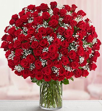 Love is blooming in red roses
