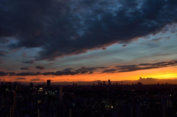 All sizes | Tokyo SkyLine | Flickr - Photo Sharing!
