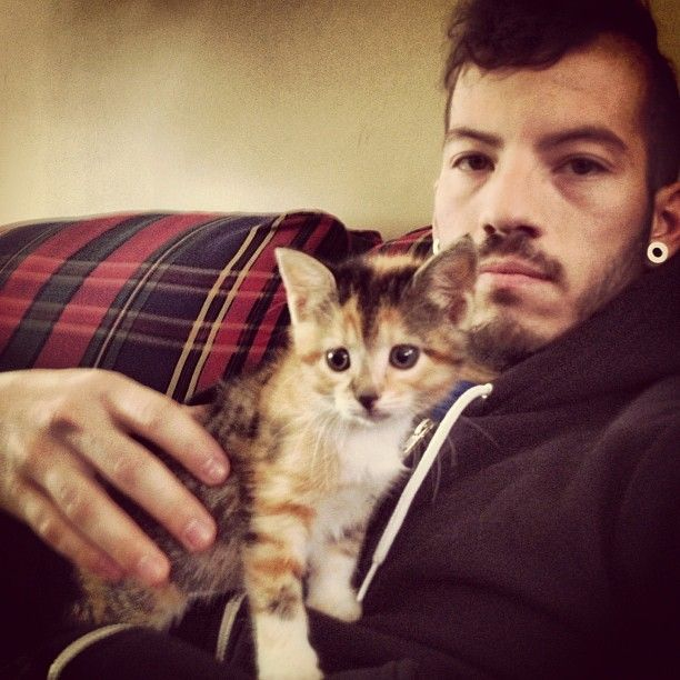 Apparently you pin one picture of Josh with cats all these other ones rise from the depths. *pins them all*