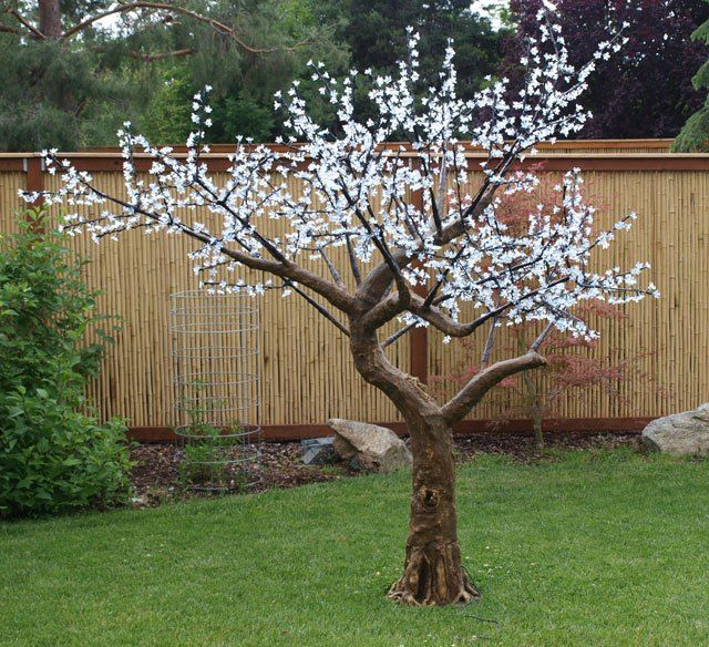 Ornamental Cherry Tree With White Led Lights Ornamental Cherry Cherry Blossom Tree Tree Lighting
