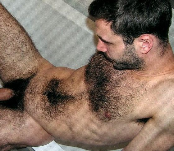 Hot hairy men naked pictures