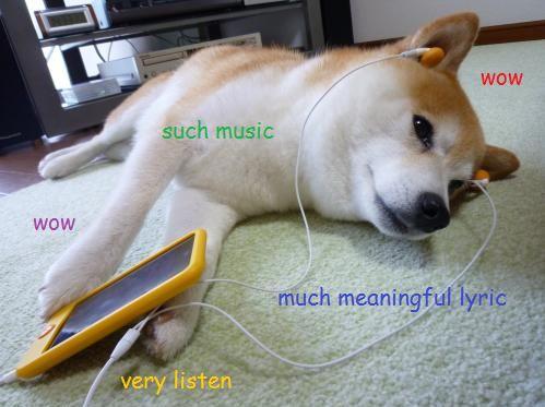 Što trenutno slušate? - Page 23 6138be2bbefb124e9349bacdcdb30519--doge-meme-amazing-dogs