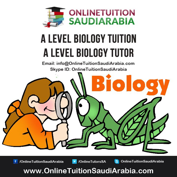 ap biology tutor Search our directory of ap biology tutors near burnham, il today by price, location, client rating, and more - it's free.