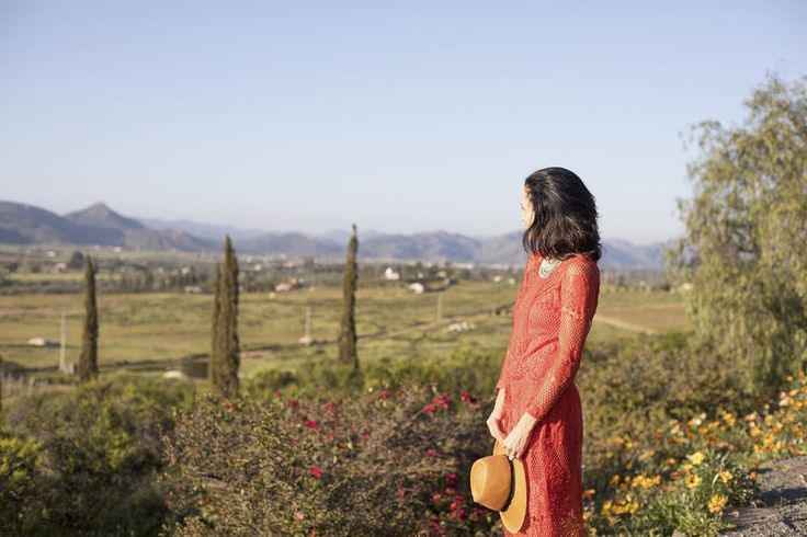 How to win at Mexico's wine region! Exploring the Valle De Guadalupe wine country @graymalin @saltandwind