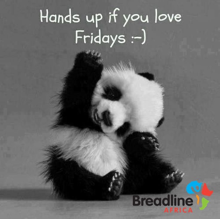 It's Friday, hands up! #FridayFun #BreadlineAfrica #Imagination @WOOLWORTHS_SA @WWFSouthAfrica @HIHTrust @SoulCity_SA