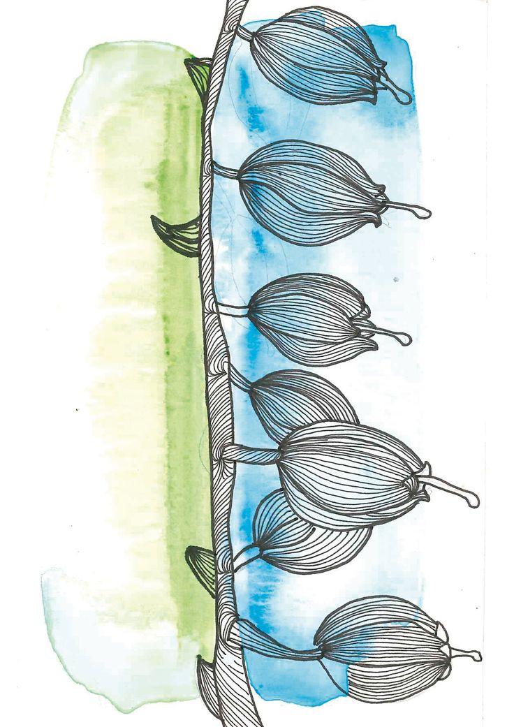 Blueberries  #ilstracion #ilustration #watercolor #acuarela #arandano #naturaleza #fruta