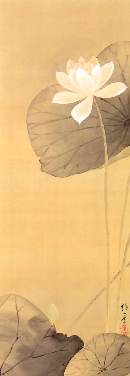 Hoitsu Sakai (1761~1829), Japan  The almost luminesence of the white lotus just blows me away.