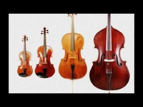 Hoe-Down from Rodeo - Aaron Copland | youtube video map by Erica Cooter shows current instruments and also shots of the orchestra [3:31]