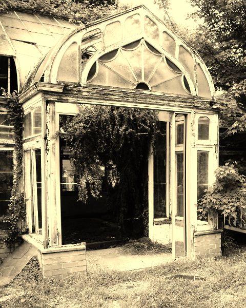 Abandoned Greenhouse Emory University, Atlanta