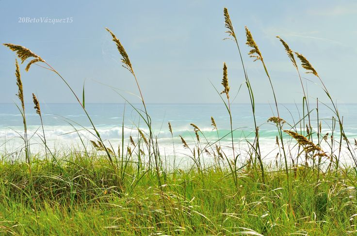 Hermoso paiseje Playa Miramar....  =D