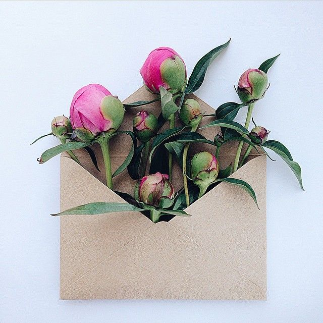 Vibrant Flowers Delicately Complement Naturally-Toned Vintage Paper Envelopes