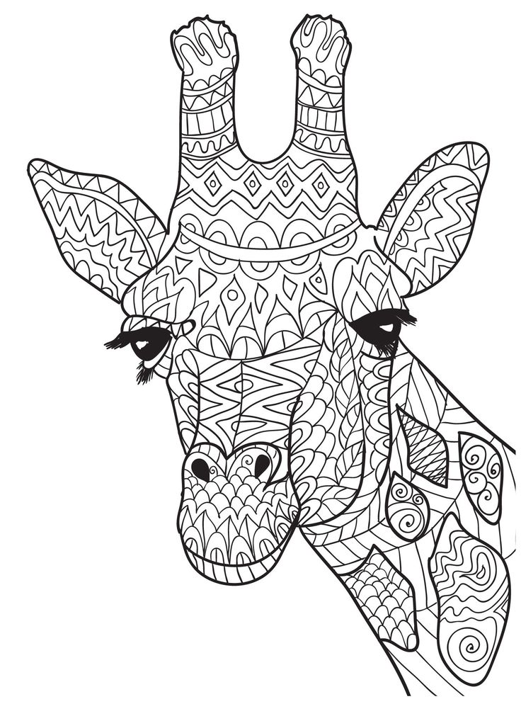 ten adult coloring pictures for people who love april the giraffe crafts pinterest adult. Black Bedroom Furniture Sets. Home Design Ideas