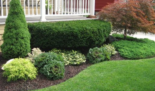 "Natural edging called ""Victorian Trench"".  This is the look I want.  Nothing to buy...oh, yeah!"