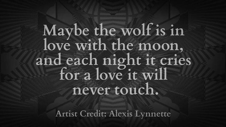 Maybe the wolf is in love with the moon and each night it cries for a love it…