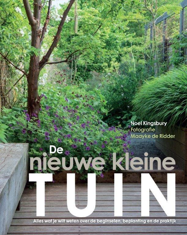 Het ontwerp en de beplanting van een kleine tuin: ideeën inspiratie en praktijkvoorbeelden