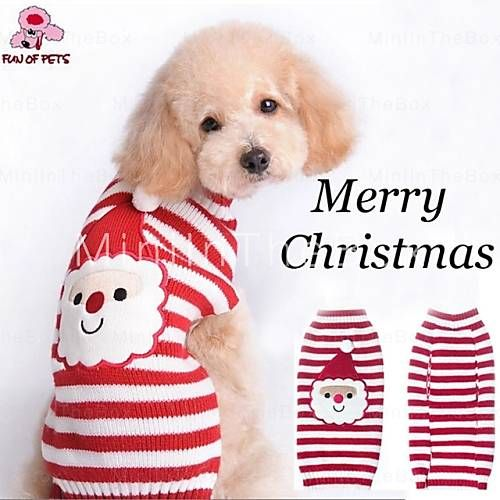 21 best petables images on pinterest animal clinic cute things christmas doggie sweater solutioingenieria Images