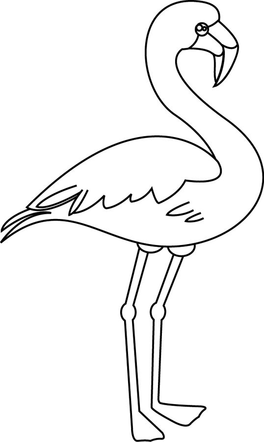 Flamant rose petit petit flamants roses pinterest animaux et roses - Rose facile a dessiner ...