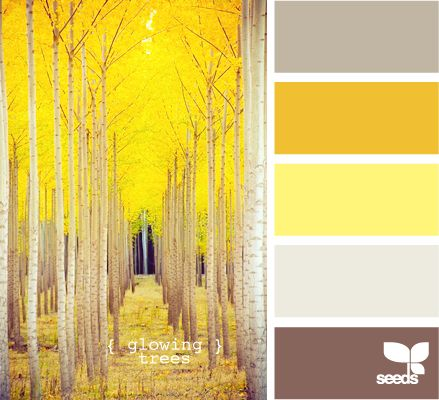 I love the muted brown-purple to go with the bright yellow. Front room?