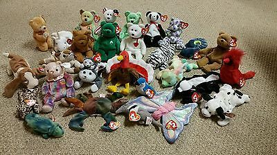 TY Beanie Babies Collectors