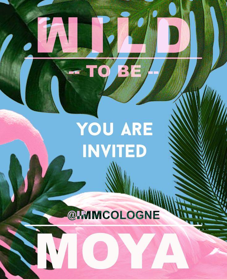 MOYA :: to be WILD