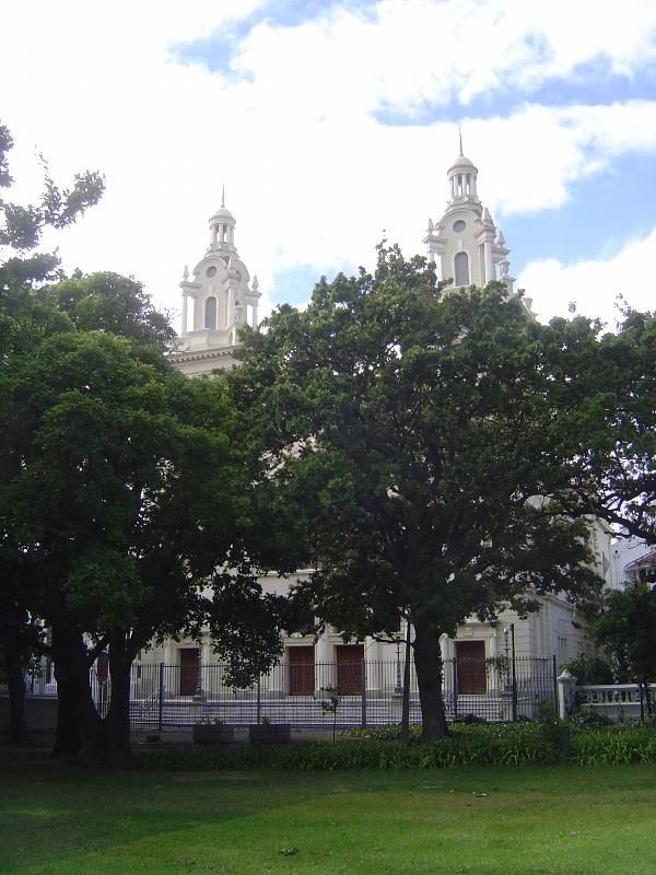 The Great Synagogue, almost hidden by oaks in the Company Garden. Completed in 1904.Cape Town, South Africa