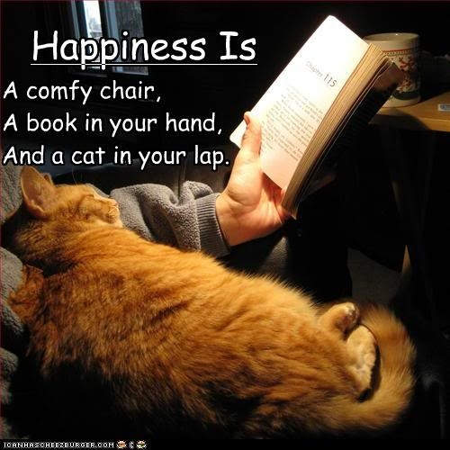 We couldn't agree more!: Orange Cat, True Happy, Cat Love, Cups Of Coff, Cups Of Teas, So True, Happy Is, Comfy Chairs, Black Labs