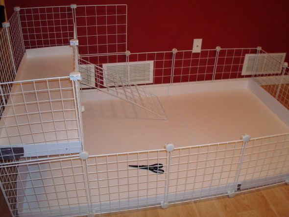 Our new huge 2 level guinea pig cage which we built for Build your own guinea pig cage