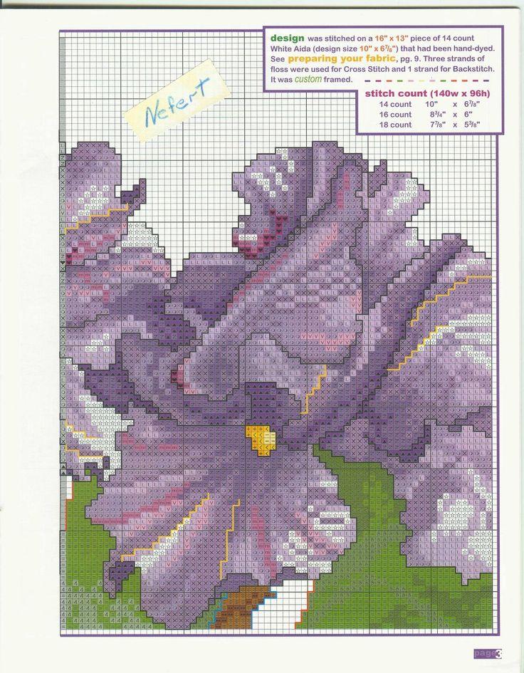 orquidea+2.jpg (1246×1600)