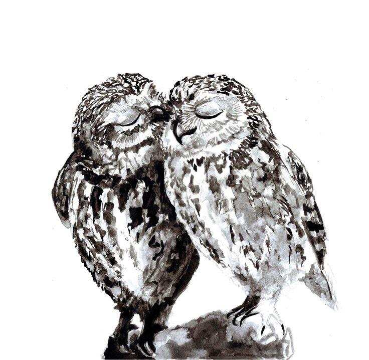 Две совы картинки нарисованные