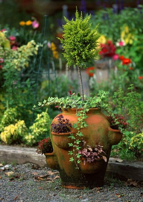 interesting use of strawberry pot