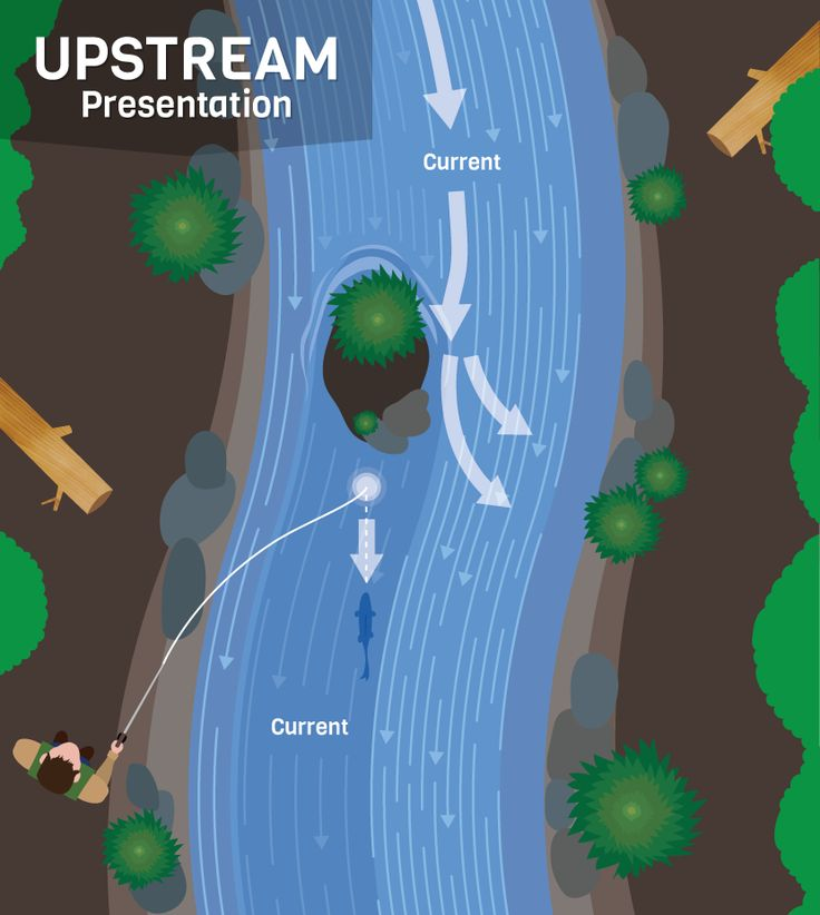 Casting Upstream - Presentation Techniques