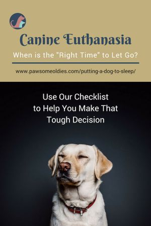 Deciding when to put a dog to sleep is always hard and heart wrenching. Use our checklist to help you make that tough decision a bit easier.