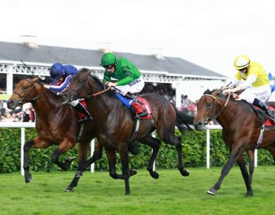 Free  Horse Racing Tips For Wednesday, October, 5  oddsdigger.com