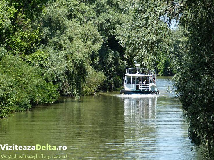 Stiați că dintre cele 3 brațe ale Deltei Dunării doar unul este navigabil? Brațele Sf. Gheorghe și Chilia sunt strabătute doar cu barca sau 🚣 caiacul. Doar Sulina are adâncimea care permite transportul marilor ambarcațiuni, peste 20 m. Cu toate acestea, este brațul cel mai scurt (64 km). #viziteazadelta https://buff.ly/2fZRmDB