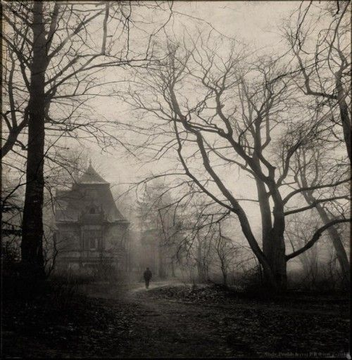 House in the woods ~ Photographer unkown