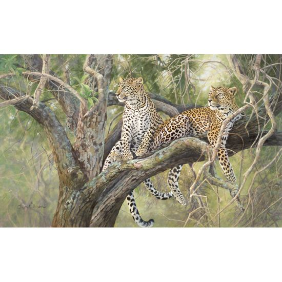 """Out Of Reach"" limited edition by Lyn Ellison"