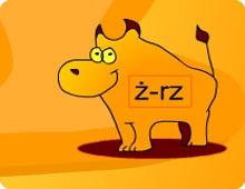 Ortografia-walka z bykami