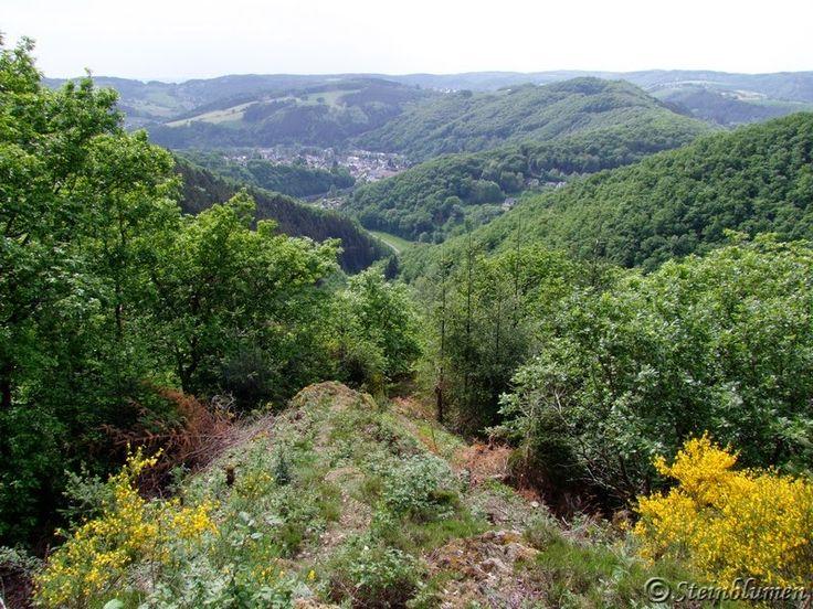 Frühling im Westerwald