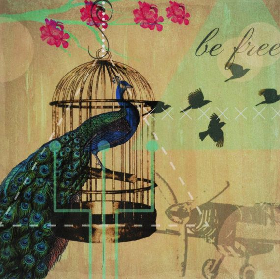 Peacock art print on wood neutral art wood wall by SharelCilliers