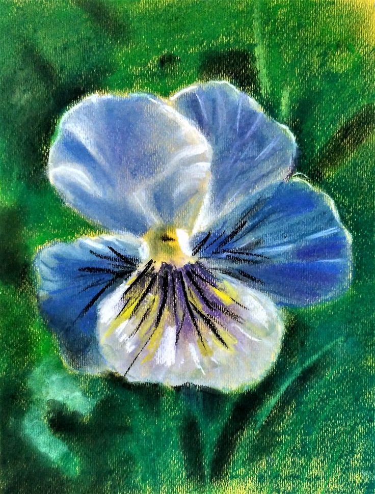 """Работа на мастер-классе """"Цветы, цветы... калейдоскоп.""""Сухая пастель. Работа слушателя с """"0"""" подготовкой по рисунку"""