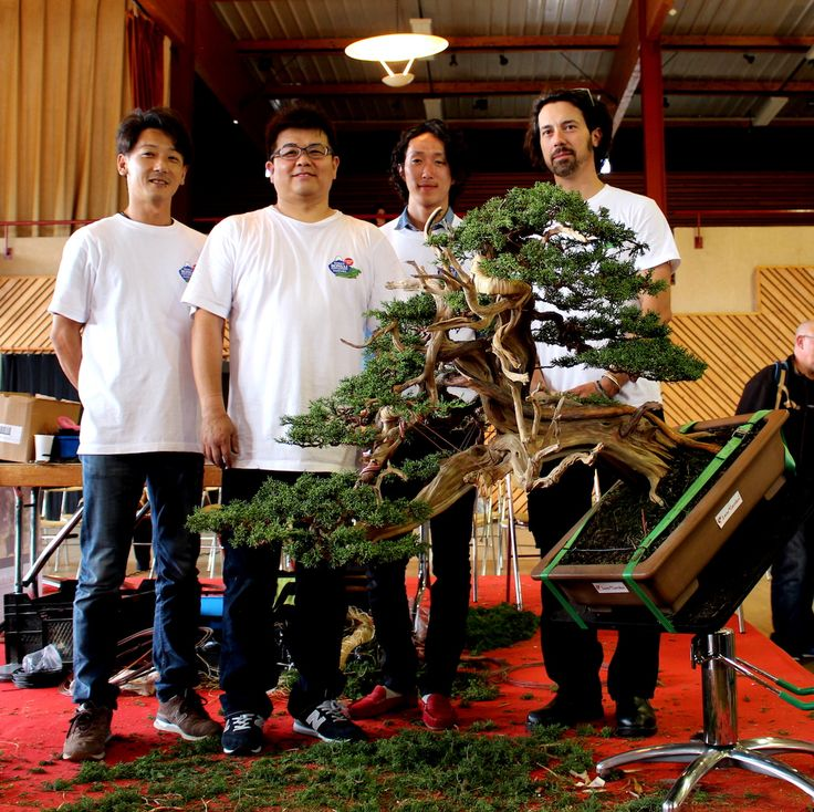 Honored to have been part of the Bonsai San show by doing the interviews with the four apprentices and their master mr. Kimura - and to have witnessed and filmed the superb demo today. The movies are being edited and will be ready this week! #bonsai
