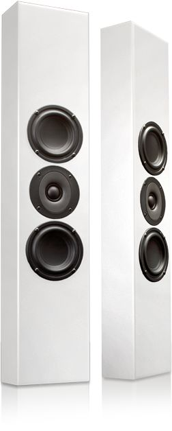 Totem Acoustic - Tribe II; fantastic sound and look--great for ultra-contemporary rooms.