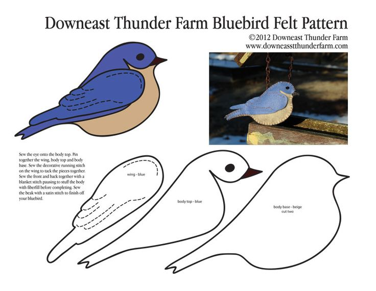 Latest posts of: downeastthunderfarm