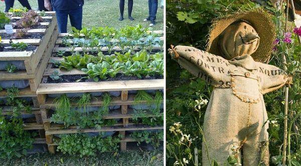 Huerta en casa: Ideas artesanales para el huerto pequeño