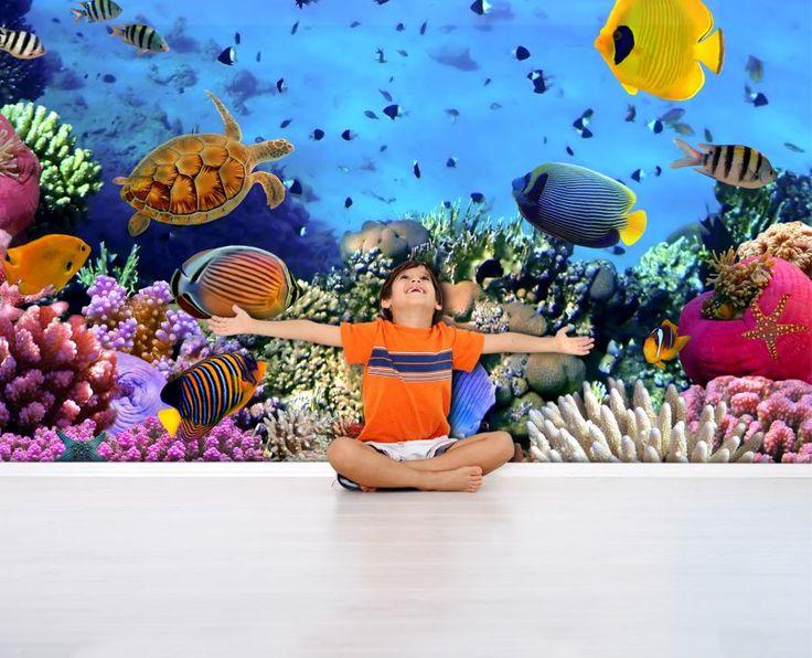 Fototapeta z rafą koralową:  http://ecoformat.com.pl/fototapeta-dla-ucznia/