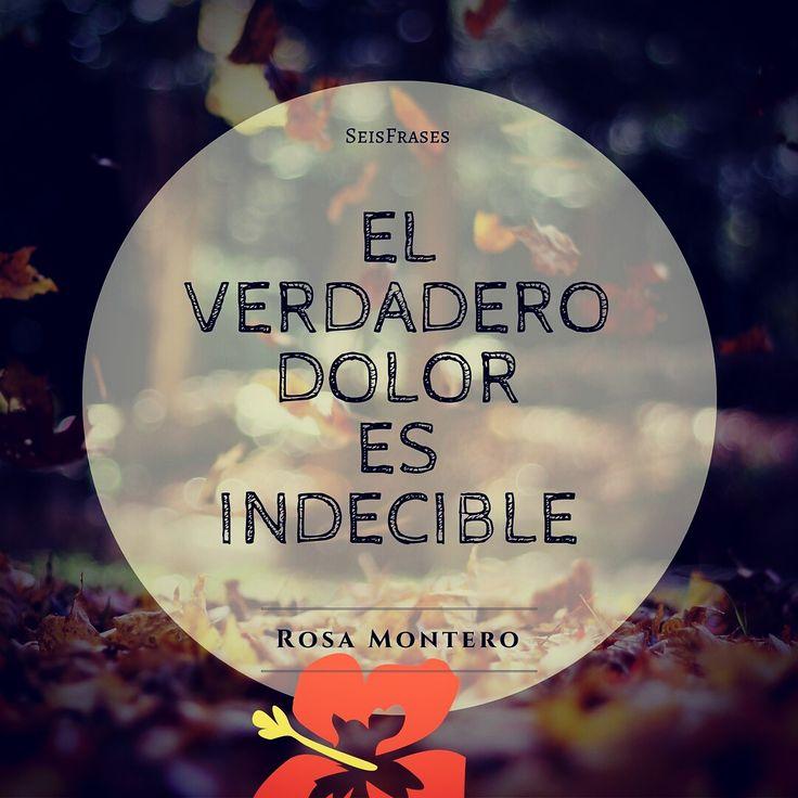 El verdadero dolor es indecible. Rosa Montero, La Ridícula Idea De No Volver A Verte.