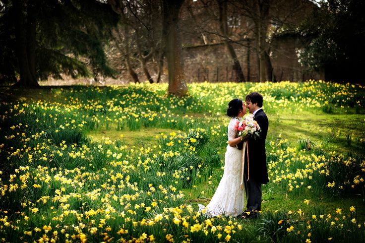 This hidden glade of daffodils was the perfect place for some bride and groom portraits at The Elvetham Hotel last weekend. Congratulations Rui and Tom! More to come soon. #elvetham #spring wedding #weddingphotography