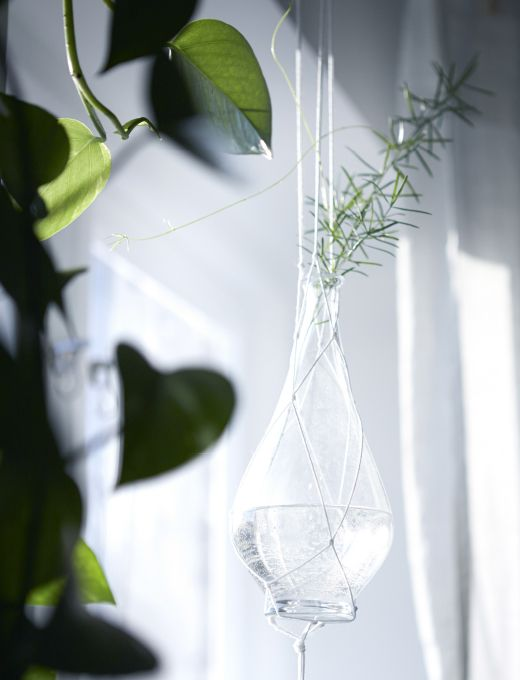 Mit hängenden Pflanzen in Glasvasen rund um dein Bett verwandelst du dein Schlafzimmer in ein Meer aus Grün.